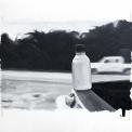 imagen-31-lago-agrio-sour-lake-detalle-10